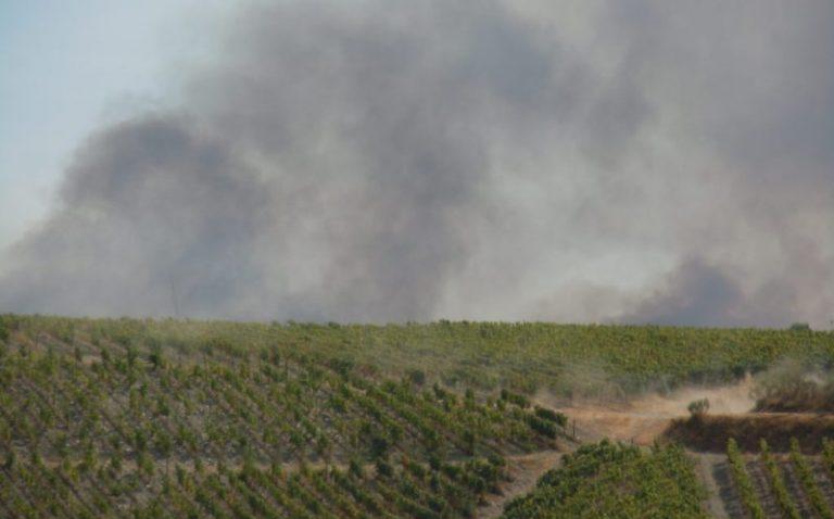 Branden vlakbij wijngaarden RP