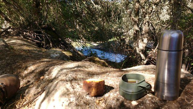 Lunch midden in de natuur